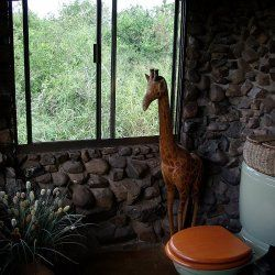 Bathroom - inside|Esikhotheni Private Game Reserve