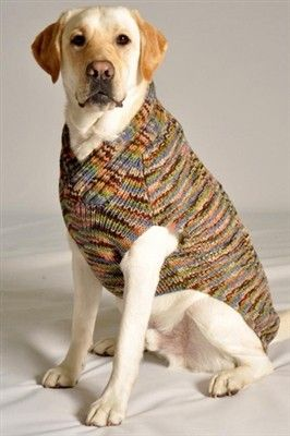 Diy Red Cable Knit Dog Sweater