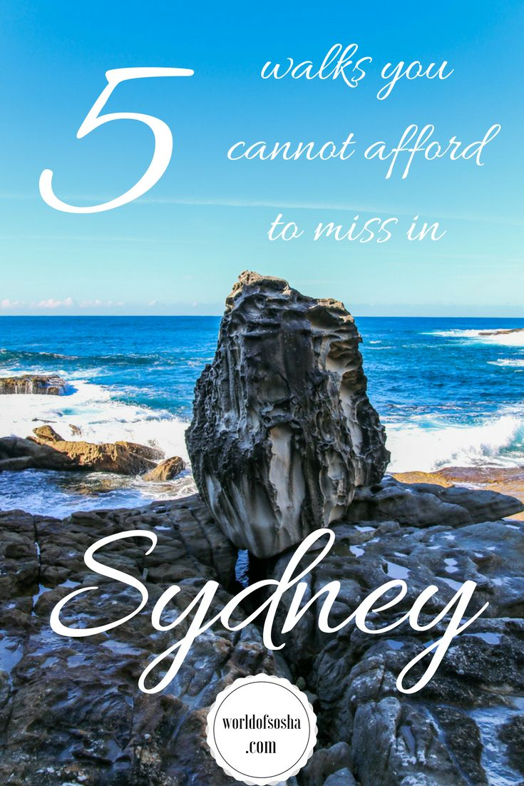5 walks you cannot afford to miss in Sydney – World of Sosha