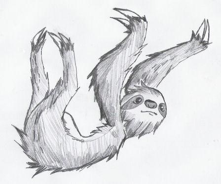 how to draw a sloth easy
