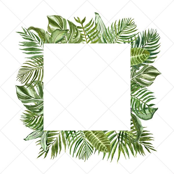 Watercolor Tropical Leaf Floral Border Clipart Frames Leaves