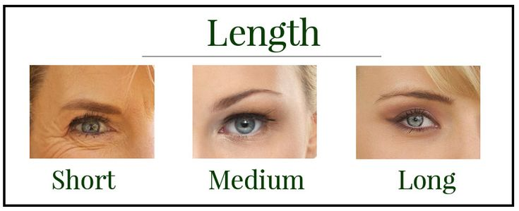 Eyebrow Shapes   Different Eyebrow Shapes