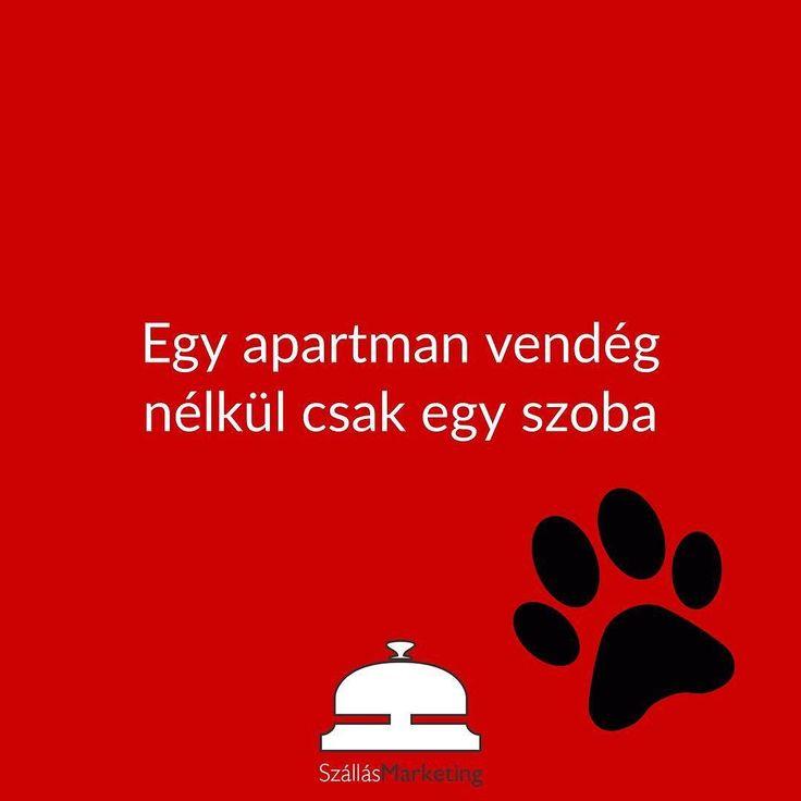 """""""Egy otthon kutya nélkül csak egy lakás"""" alapján. Állatbarát szállások jelentkezzetek  #kutyabarat #állatbarát #apartmanmarketing #apartmanos #kutya #macska"""
