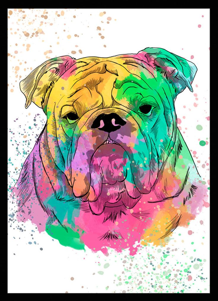 Bulldog Inglês - Dog in Art