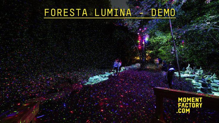 Foresta Lumina: From Park to Illuminated Forest