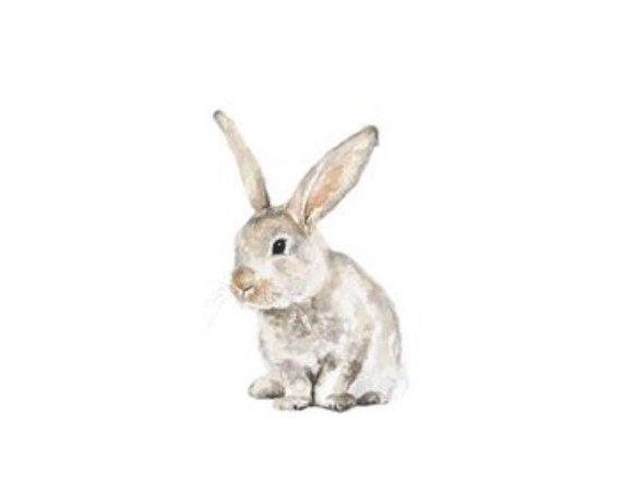 Conejo bebé imprimir acuarela pintura Animal por FoxHollowDesignCo
