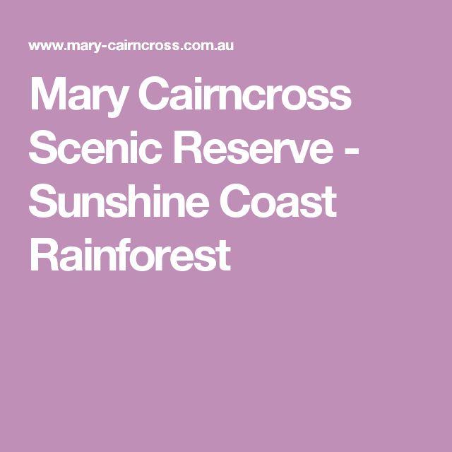 Mary Cairncross Scenic Reserve - Sunshine Coast Rainforest