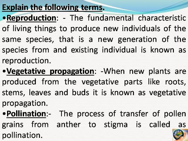 OMTEX CLASSES: Reproduction, Vegetative Propagation, Pollination