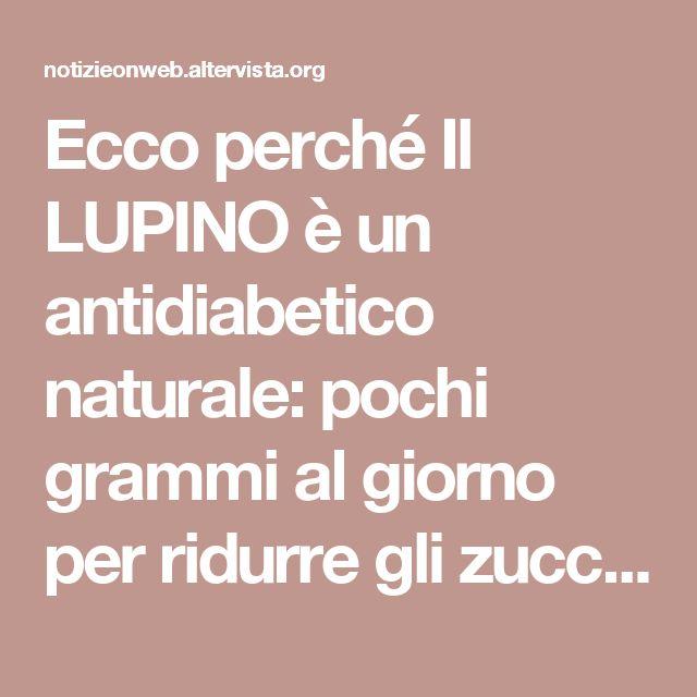 Ecco perché Il LUPINO è un antidiabetico naturale: pochi grammi al giorno per ridurre gli zuccheri nel sangue