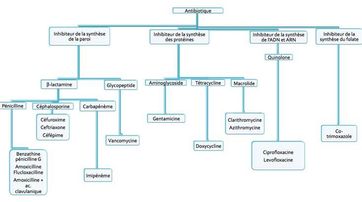Introduction Dans une étude, sur 100 patients avec prescription d'antibiotique, 80 étaient inapropriées, On devrait se limiter un peu sur la prescription de l'antibiotique pour éviter l'augmentation des résistances. Grossesse tous les antibios peuvent traverser le placenta, à divers degrés, certains sont tératogènes, il y a une classification pour le risque en cas de grosesse (A,B,C,D,E). Il n'y a pas de classe A (prouvé utilisé chez les femmes enceintes; B= beta-lactamines de type...