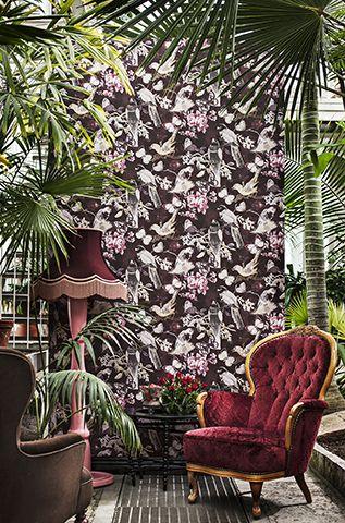 #Wallpaper #Duvarkagidi Birds & Butterflies,3334
