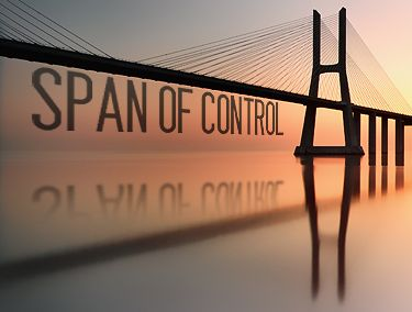 Span Of Control - 5 Things Every Leader Should Know - Forbes
