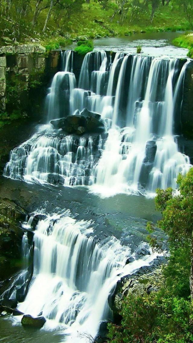 Ebor Falls, Guy Fawkes River, New South Wales #Australia