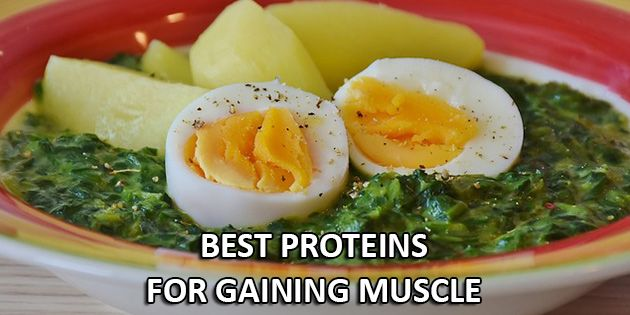 6 Best Proteins To Gain Muscle FAST - How To Build Big Muscles
