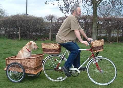 i need this.  David Hembrow, basketmaker - Dog trailer basket
