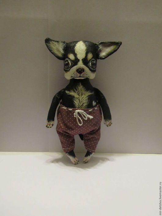 Куклы и игрушки ручной работы. Чихуашка Бу чёрно-белый... Mir-Detstva. Интернет-магазин Ярмарка Мастеров. Чихуахуа