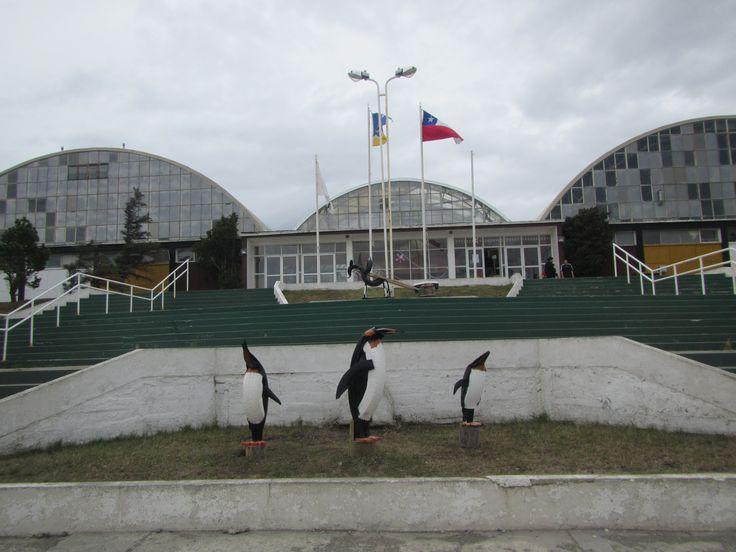 Polideportivo Enap. Cerro Sombrero. Tierra del Fuego. XII Región de Magallanes. Chile.