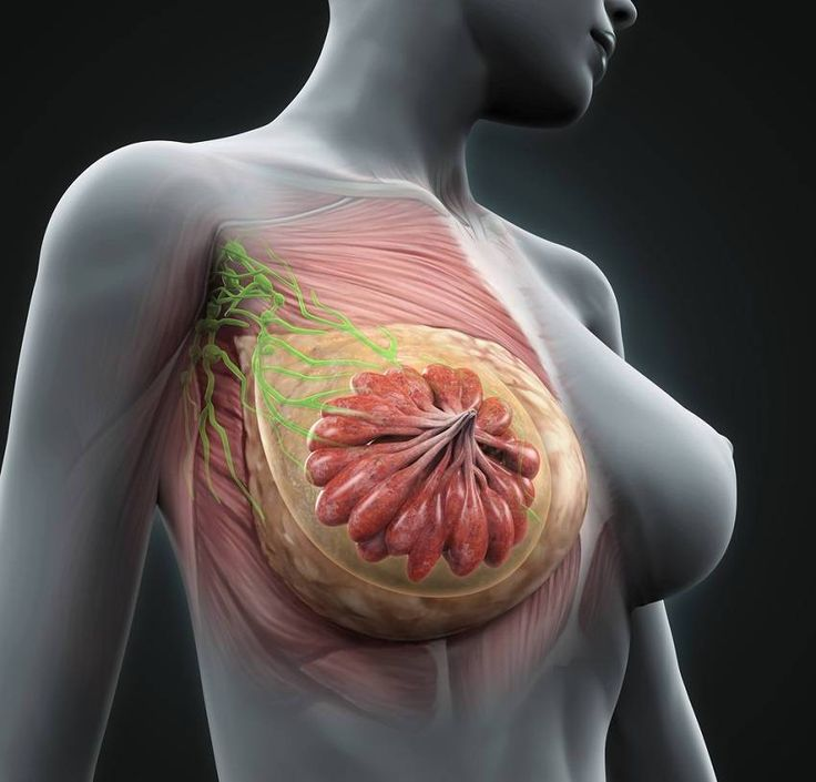 Women in China Rarely Get Breast Cancer and Here Is Why
