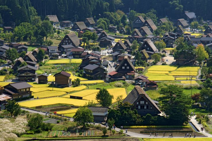 Shirakawa-go, Japan! A small traditional village showcasing a unique style of buildings!