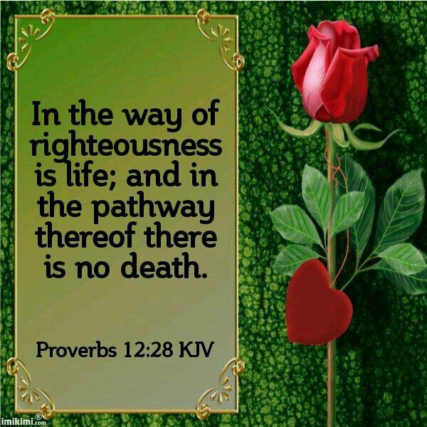 Jesus Bible Quotes Wallpaper Proverbs 12 28 Kjv Kjv Scripture Tlc Creations Bible