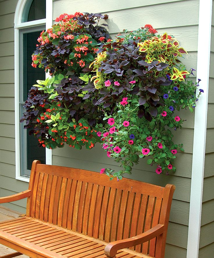 green walls and vertical gardens 20 inch single tier wall planter liner set - Window Box Planters
