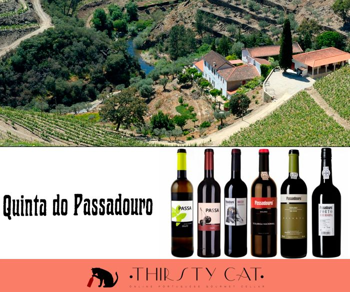 Quinta do Passadouro brings the best of Douro to your table! :) http://www.thirsty-cat.com/category/quinta-do-passadouro