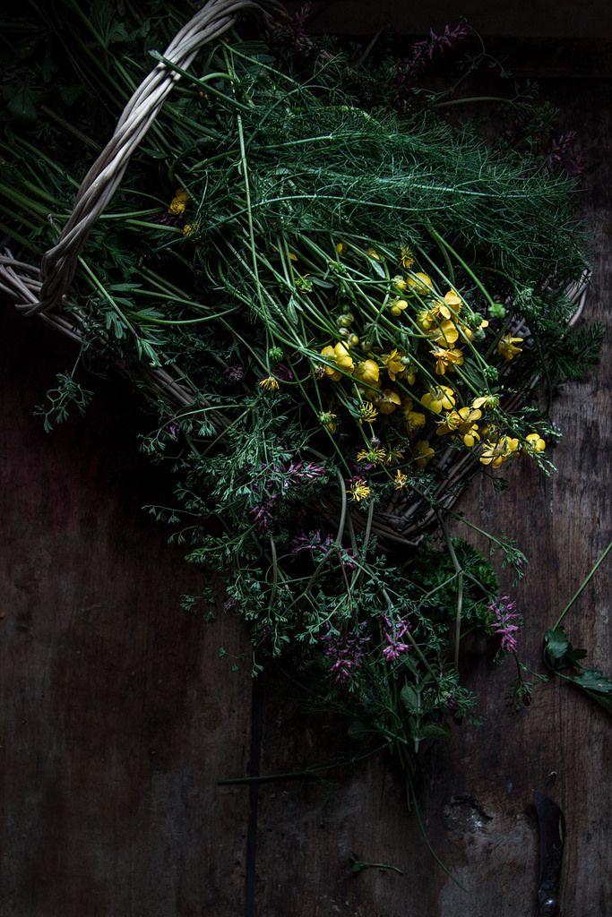 https://flic.kr/p/SNrAPB   quiche con asparagi