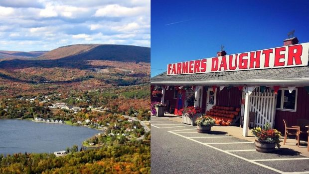 The Farmer's Daughter is offering 2 acres of land (for free!) to anyone who will…
