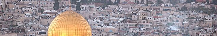 Paesi Arabi: Lingua e cultura araba a Roma | Roma Multietnica: intercultura, immigrazione e multietnicità