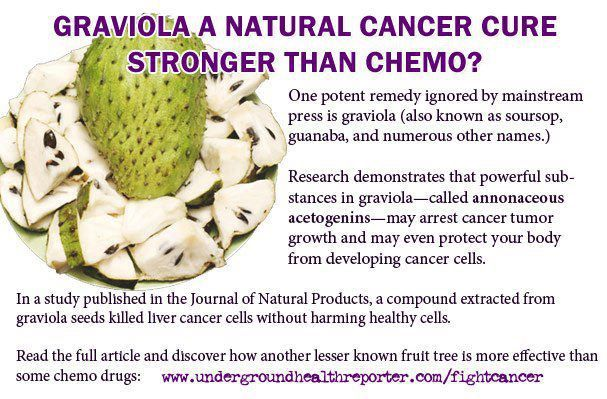 Natural Therapy To Cure Cancer