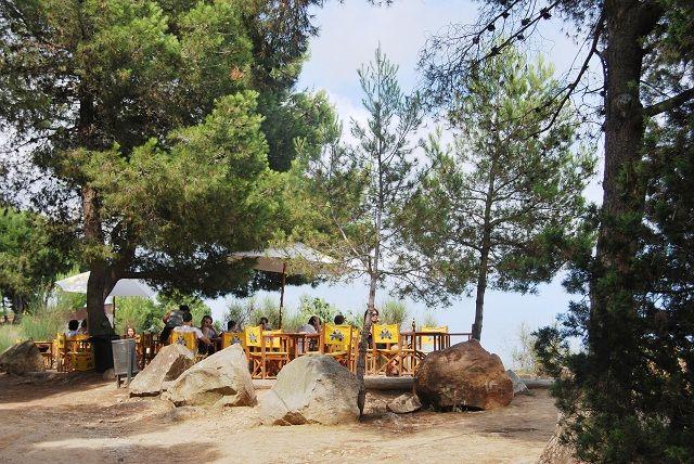 Caseta Migdia: barbacoa, bosque y vistas al mar sin salir de Barcelona