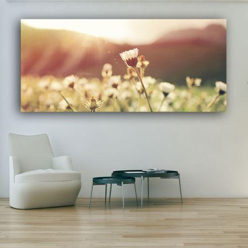 Πανοραμικός πίνακας σε καμβά άνθος σε ηλιοβασίλεμα