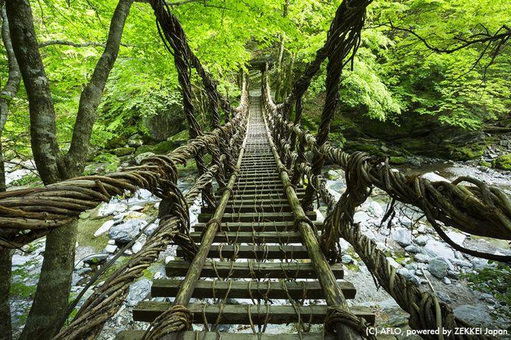 奥祖谷 渓谷 かずら橋 奇橋 徳島 蔦 吊り橋