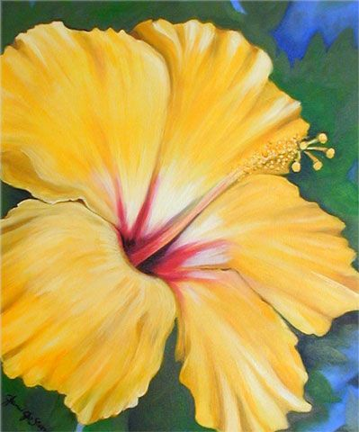 Oil Paintings Of Flowers | Flower Paintings by Key West Artist Janis Stevens