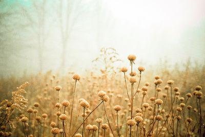 #Photography #Nature #Landscape #Digital