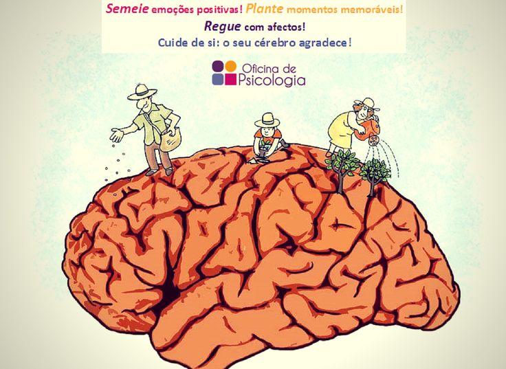 Cuidar do cérebro como quem cuida de uma planta :)