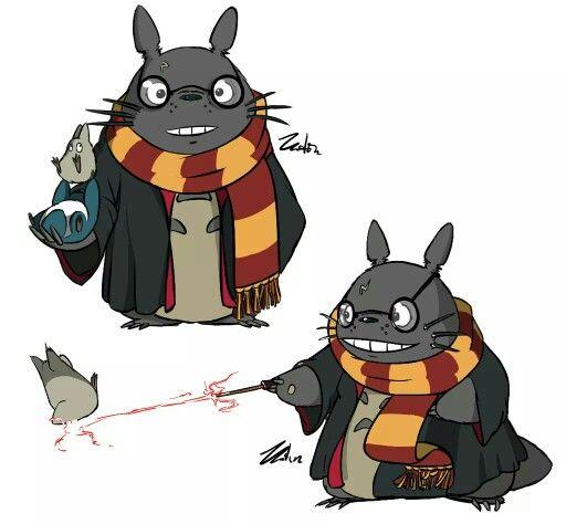 Totoro Potter :)