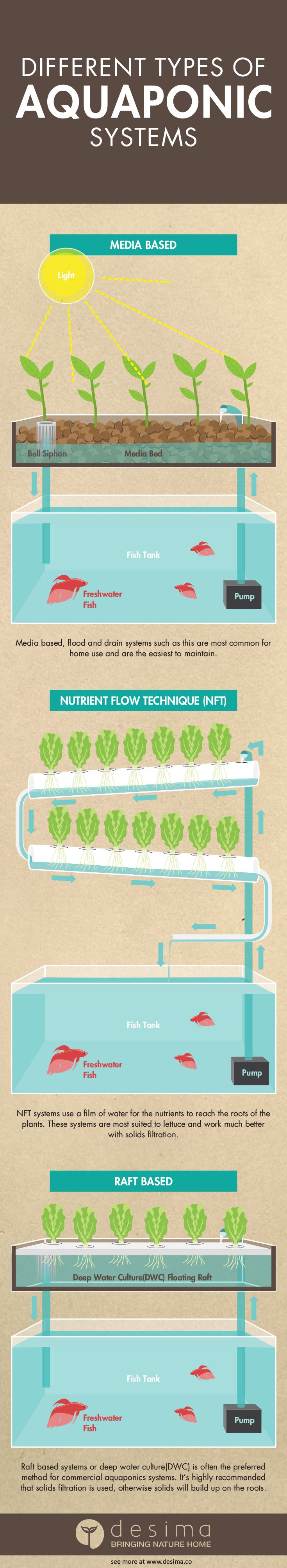 There are many different type of aquaponics systems. These include media  based, NFT(nutrient flow techinque) and DWC (deep water culture). Use this  infographic to help choose the right system for you.