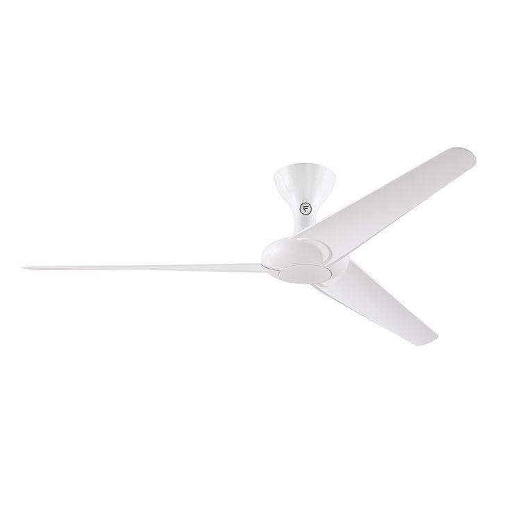 Fanimation Drone 60 inch Ceiling Fan - Glossy