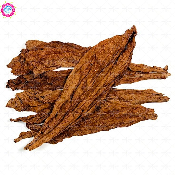 White candy seeds Smoking oil Tobacco leaf Vegetables seeds Perennial plants herb sementes ferbi packaging t.h.c 100pcs/1000pcs. Yesterday's price: US $1.28 (1.06 EUR). Today's price: US $0.49 (0.41 EUR). Discount: 62%.