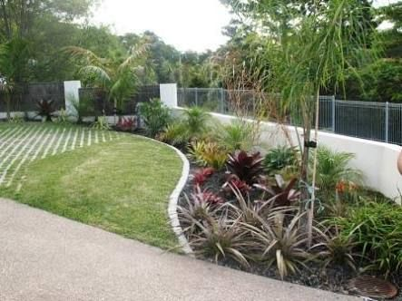 Tropical Garden Ideas Nz 40 best garden glade images on pinterest | garden, trees and topiaries