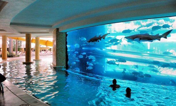This pool