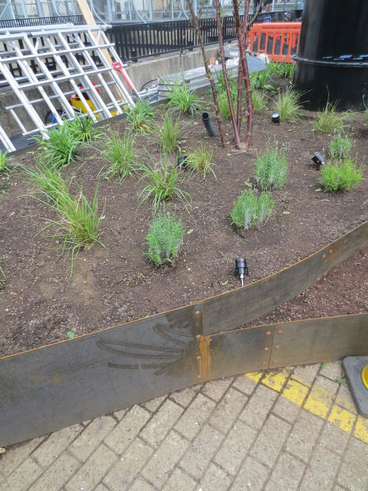 EverEdge steel planters are made to order allowing for little restriction to planter size or design.