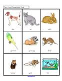 Pets - Here is a collection of activity pages and games to make that co-ordinate with the early childhood theme Pets, and can be used when planning activities and curriculum for young children