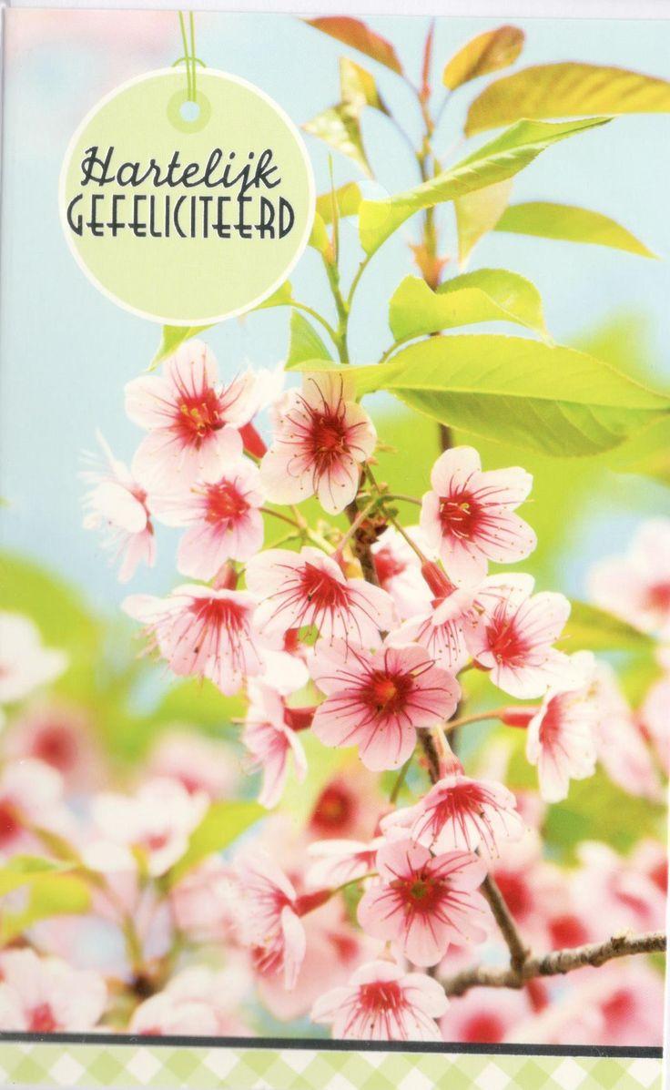 Uitzonderlijk 18 best Verjaardagskaarten bloemen voor vrouwen images on Pinterest RO11