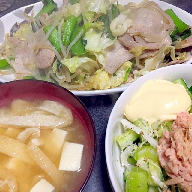 油揚げと豆腐は味が合う #夕飯 - 4件のもぐもぐ - 肉野菜炒め、白米、ツナサラダ、豆腐油揚げ味噌汁 by ms903
