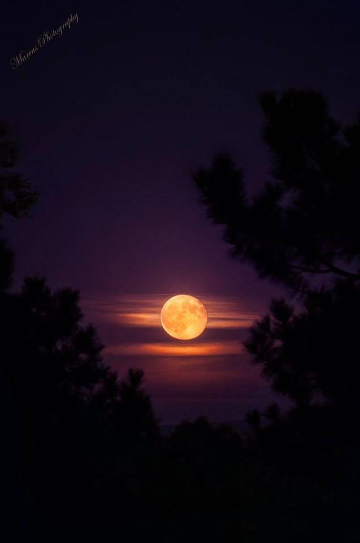 1485 best moon images on pinterest landscapes nature and