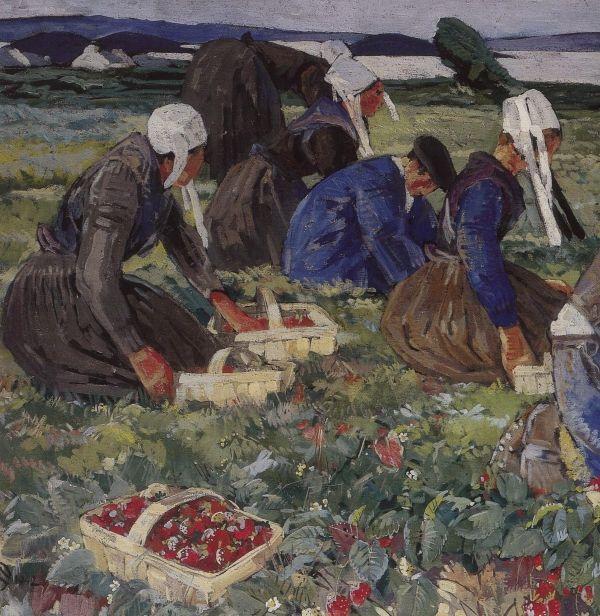 Cueillette des fraises : un travail de groupes . pas une fraise ne doit échapper aux regards !