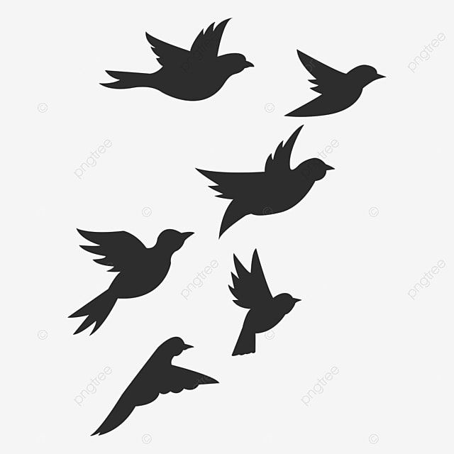Bird Flying Silhouette Bird Silhouette Flight Png Transparent Clipart Image And Psd File For Free Download Birds Flying Bird Silhouette Bird Illustration