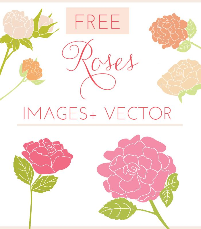 free rose vector via Angie Makes